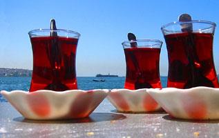 Saluttt ! Tea_turkey7